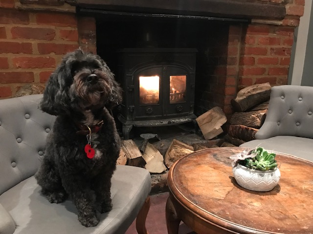 Dog friendly pub Hertfordshire